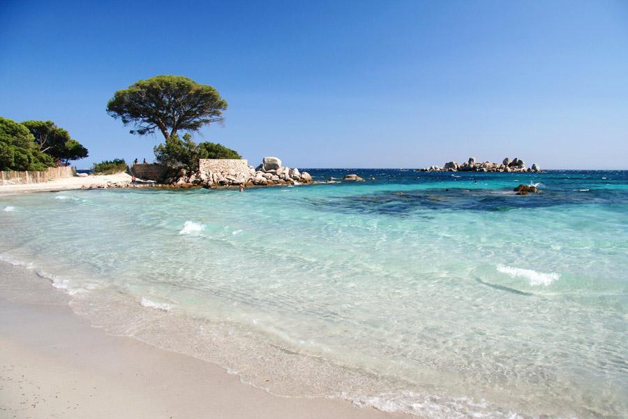 plage palombaggia porto vecchio